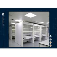 Wholesale Microbiological Laboratory Walk In Fume Hood  For Chemical Testing Fume Cabinet from china suppliers