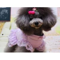 Wholesale Medium Dog clothes shih tzu puppies Dress Cute Purple Lace Tutu Tulle from china suppliers