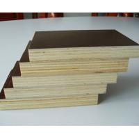 Wholesale Plywood for Construction  from china suppliers