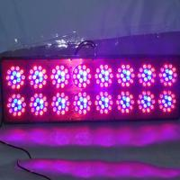 Wholesale CIDLY A16 growing lights,cidly 600w dual lenses full spectrum led grow light from china suppliers