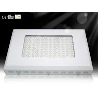 Wholesale Horticulture Lighting Square LED Plant Grow Lights growth Room Lamp with Red and Blue LED from china suppliers