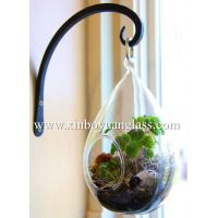 Wholesale Teardrop glass terrariums hanging vase Glass Air plant holders from china suppliers