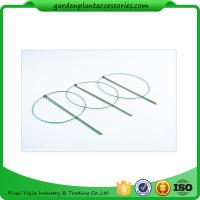 Wholesale 3 Rings Green Garden Plant Supports , Circular Plant Supports Plastic Coated from china suppliers