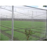 Wholesale PE Plant Anti Insect Net,PE Anti Aphid Insect Netting from china suppliers