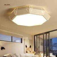 Wholesale Ceiling light Interior lighting Creative arc Acrylic lamp Modern led ceiling light for the living room lights from china suppliers