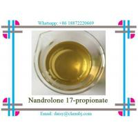 Wholesale Nandrolone Steroid Propionate Nandrolone 17-propionate for Bodybuilding CAS 7207-9 2-3 from china suppliers