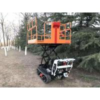 Wholesale Mini crawler type garden work platform  3GP-120 from china suppliers