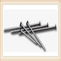 Wholesale bright common nail ( factory with competitive price ) from china suppliers