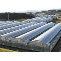 Wholesale Poly Plastic Greenhouse Film Moisture Proof , Blow Molding Processing Type from china suppliers