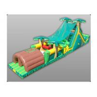 Wholesale Digital Painting Large Bouncy Obstacle Course , Inflatable Combo Bouncer Dual Lane Module from china suppliers
