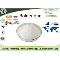 Wholesale Anabolic Androgenic Steroids Boldenone Steroids Powder Boldenone Base CAS 846-48-0 from china suppliers