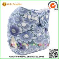 Quality 2014 new arrival Eco-friendly Sunny Baby Cloth Diaper Blue for sale