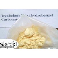 Wholesale CAS 23454-33-3 Trenbolone Steroids Trenbolone Hexahydrobenzylcarbonate / Parabolan from china suppliers