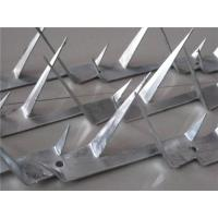 Wholesale wall spike from china suppliers