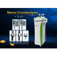 Wholesale Cryolipolysis Cool Shaping Cellulite Reduction Machine For Whole Body Slimming from china suppliers