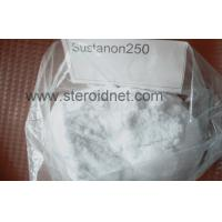 Wholesale Anabolic Testosterone Blend Powder Raw Steroid Sustanon 250 Powder from china suppliers