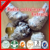 Wholesale Radix Notoginseng P.E/Sanchi Extract/ Total panax notoginseng saponins from china suppliers