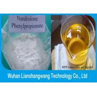Wholesale Nandrolone Phenylpropionate / NPP CAS 62-90-8 Muscle Building Steroid White Powder from china suppliers