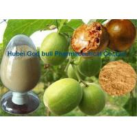 Wholesale Fructus Momordica Grosvenori Swingle Fruit Extract Powder CAS 88901-36-4 from china suppliers