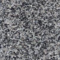 Wholesale Popular Granite for Countertops (G623) from china suppliers