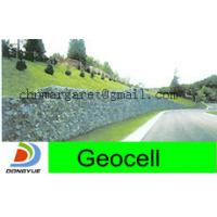 Wholesale geocell for green retaining walls from china suppliers