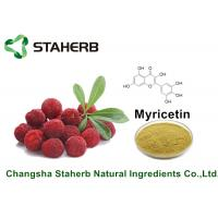Wholesale Bayberry Bark Pure Natural Plant Extracts Myricetin 98% For Health Product By HPLC from china suppliers