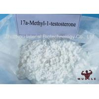 Wholesale Androgens White Powder Strongest Testosterone Steroid 17a Methyl 1 Testosterone 98% CAS 65-04-3 from china suppliers