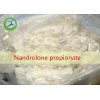 Wholesale CAS 7207-92-3 White Powder Nandrolone Propionate , Pharmaceutical Raw Materials from china suppliers
