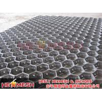 China HESLY Hexsteel/Hexmesh & Anchors Factory