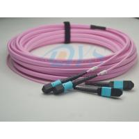 Quality MTP - LC 24core 9/125 Optical Fiber Patch Cord , Equipment with MPO/MTP interface for sale
