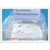 Wholesale Raw Powder Nandrolone DECA Durabolin Nandrolone Phenylpropionate CAS 62-90-8 from china suppliers