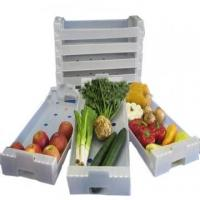 Wholesale Anti - Corrosion Collapsible Plastic Moving Boxes Correx Box For Fresh Fruit from china suppliers