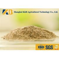 Quality Livestock Fish Bone Meal / Fish Powder Fertilizer Maintain Normal Metabolism for sale