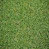 Buy cheap Artificial Grass carpet Waterproof Sports Flooring Golf Grass from wholesalers