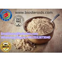 Wholesale High Purity Body Supplement Kola Nut Extract / Cola Acuminata Powder CAS:68916-19-8 from china suppliers