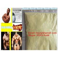 Wholesale Injectable Anabolic Trenbolone Acetate / Tren Acetate Yellow Trenbolone Powder For Bodybuilding 10161-34-9 from china suppliers