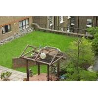 Wholesale Pet friendly artificial grass from china suppliers
