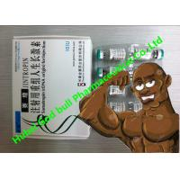 Wholesale Jintropin Human Growth Hormone Hgh Anabolic Steroids 10iu / Vial White Lyophilized Powder from china suppliers