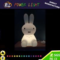Wholesale LED Gift Light Home Decoration Color Changing LED Light Toy from china suppliers