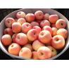 Buy cheap Sweet Fresh No Wounds Organic Fuji Apple Contains Vitamin C , Vitamin B6, pericarp thick and tough from wholesalers