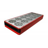 Wholesale 630nm Red 460nm Blue 600x300 LED grow light 300w from china suppliers