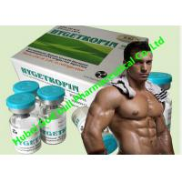 Wholesale Hygetropin 8iu / Vial 25vials / Kit Human Growth Hormone Hgh Muscle Gain from china suppliers