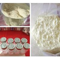Wholesale Albuterol Sulfate CAS 51022-70-9 Weight Loss Powders for Bronchial Asthma Treatment from china suppliers