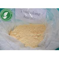 Wholesale USP Standard Raw Steroid Powder Trenbolone Acetate For Weight Loss CAS 10161-34-9 from china suppliers
