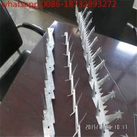 Wholesale Security wall spikes /Home and Garden Security Fence, Gate/Wall Anti-climb Spikes from 100% factory from china suppliers