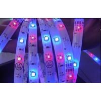 Wholesale 24VDC IP65 SMD 5050 LED Strip Epistar 60 Leds / Meter 72 Watt Purple LED Strip from china suppliers