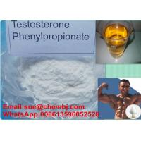 Wholesale 99% High Purity Raw Steroid Powders Test PP / Testosterone Phenylpropionate CAS 1255-49-8 from china suppliers