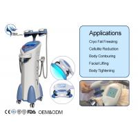 Wholesale Cryolipolysis Fat Freeze Slimming Machine from china suppliers