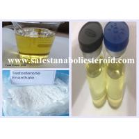 Wholesale Injectable Anabolic Steroids Hormone Powder Testosterone Enanthate 250mg/ml for Muscle Intramuscular from china suppliers