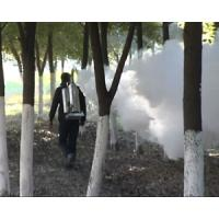 Wholesale Knapsack sprayer outdoor pesticide thermal fogger (five year engine guarantee) from china suppliers